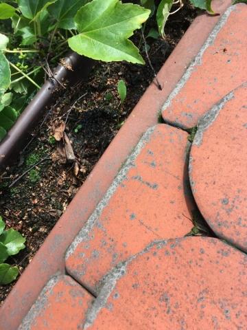 płukanie rynien, przetykanie instalacji deszczowej, przepychanie rynny
